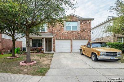 San Antonio Single Family Home New: 10939 Palomino Bluff