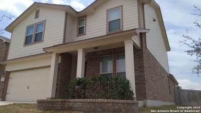 San Antonio Single Family Home New: 1919 Estonia Grey
