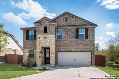 San Antonio Single Family Home New: 6038 Venado Trace