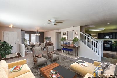 San Antonio Single Family Home New: 10702 Terrace Plain