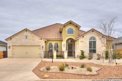 New Braunfels Single Family Home New: 2442 Kookaburra Dr