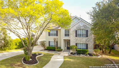 San Antonio Single Family Home New: 526 Mesa Ridge