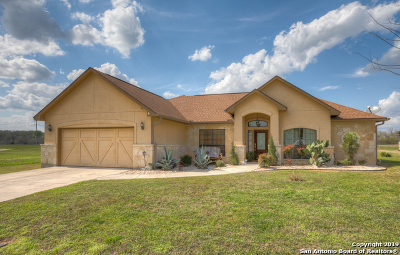 New Braunfels Single Family Home New: 207 Mackenzie Dr