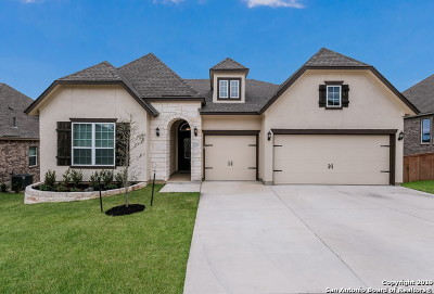 San Antonio Single Family Home New: 25318 Pleasant Beach