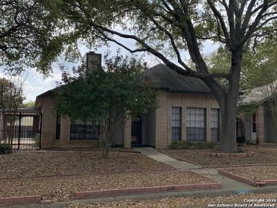 San Antonio Single Family Home New: 13610 Stony Forest Dr
