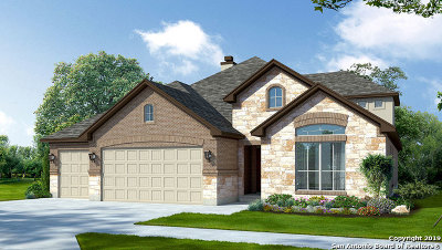 Boerne Single Family Home New: 8206 Dahila Run