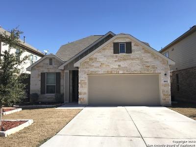 San Antonio Single Family Home New: 8002 Dublin Frst