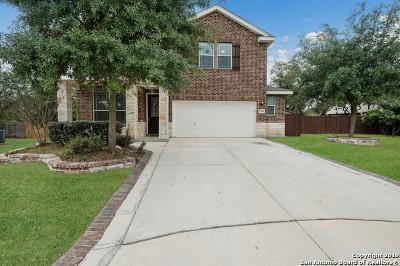 San Antonio Single Family Home New: 9950 Wind Dancer