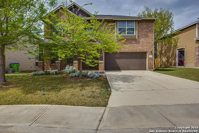 San Antonio Single Family Home New: 10739 Bushbuck Field