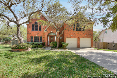 Bexar County Single Family Home New: 13507 Mt Olympus