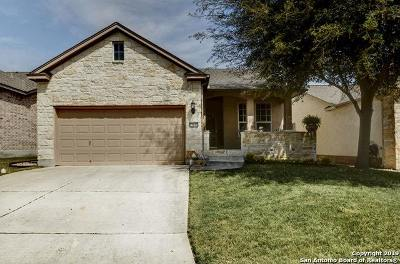 San Antonio Single Family Home New: 12611 Desert Palm