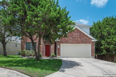San Antonio Single Family Home New: 6303 Jade Gln
