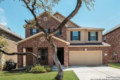 San Antonio Single Family Home New: 20410 Creek River