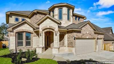 San Antonio Single Family Home New: 1622 Briar Spring