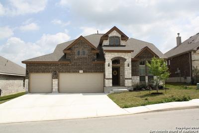 San Antonio Single Family Home New: 1706 Briar Spring