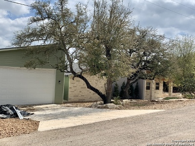 Canyon Lake Single Family Home For Sale: 310 Nighthawk Ln