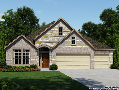 San Antonio Single Family Home New: 5303 Agave Spine