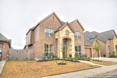Guadalupe County Single Family Home New: 2149 Mill Vly