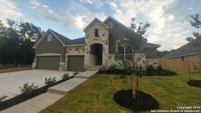 Boerne Single Family Home New: 29509 Kearney Ridge
