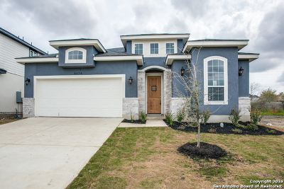 San Antonio TX Single Family Home New: $305,000
