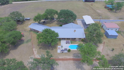 La Vernia Single Family Home For Sale: 9638 Highway 87 West