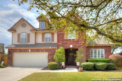 San Antonio Single Family Home New: 25407 Mesa Crst