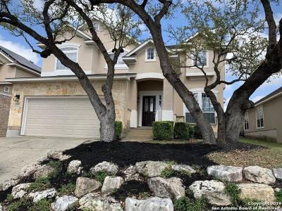 San Antonio Single Family Home New: 26034 Starling Hill