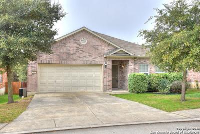 San Antonio Single Family Home New: 4815 James Gaines