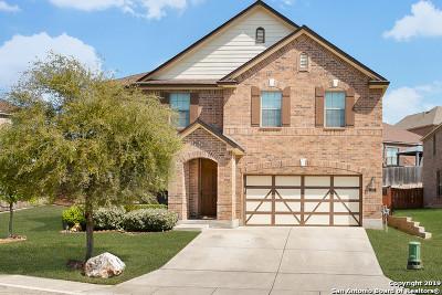 San Antonio Single Family Home New: 1227 Bridle Bit
