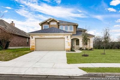 San Antonio TX Single Family Home Price Change: $299,000