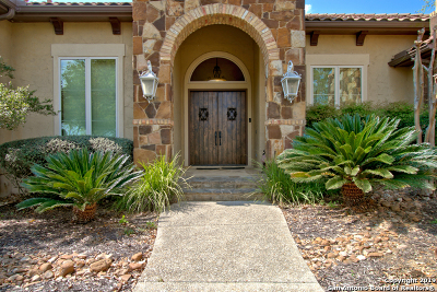 New Braunfels Single Family Home For Sale: 1239 Vintage Way