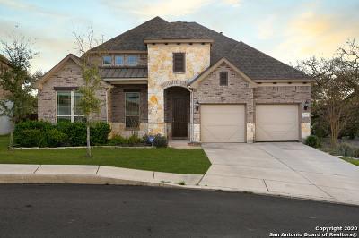 Boerne Single Family Home New: 8030 Platinum Ct