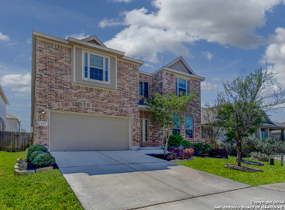 Cibolo Single Family Home For Sale: 557 Saddlehorn Way