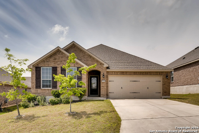 Boerne Single Family Home For Sale: 27515 Paseo Mesa