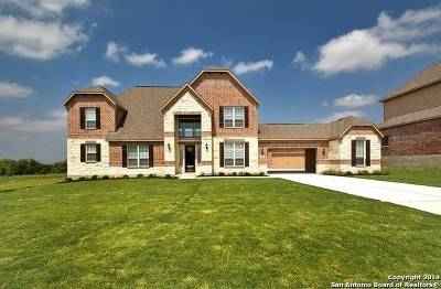 Castroville Single Family Home For Sale: 196 Texas Bend