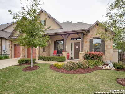 Kendall County Single Family Home For Sale: 196 Autumn Rdg