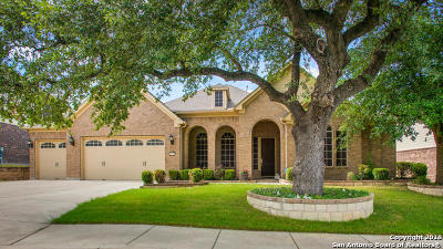 Bexar County Single Family Home Active Option: 12235 Prince Solms
