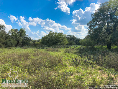 Atascosa County Residential Lots & Land For Sale: 003 Tank Hollow Road