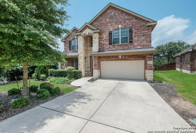 Cibolo Canyons Single Family Home For Sale: 3223 Highline Trail