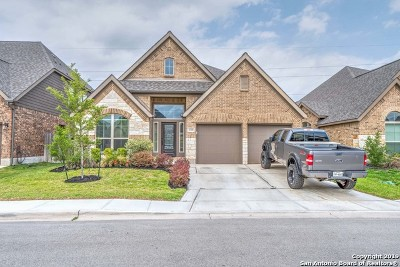 Seguin Single Family Home For Sale: 2138 Pioneer Pass