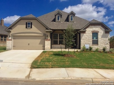 Single Family Home For Sale: 5215 Agave Spine