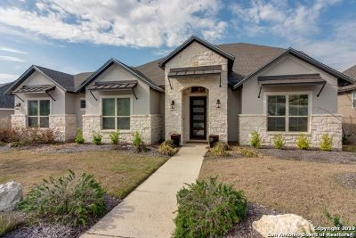 Single Family Home For Sale: 24119 Azul Dawn