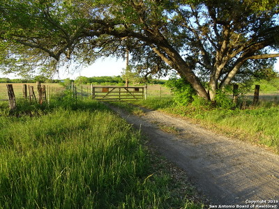 Wilson County Farm & Ranch For Sale: Fm 3432