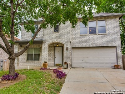 Converse Single Family Home Active Option: 8126 Chestnut Manor Dr