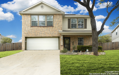 Boerne Single Family Home For Sale: 7611 Presidio Ledge