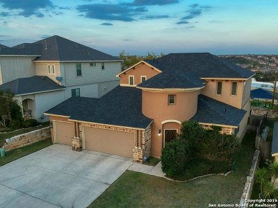 Single Family Home For Sale: 23514 Woodlawn Ridge