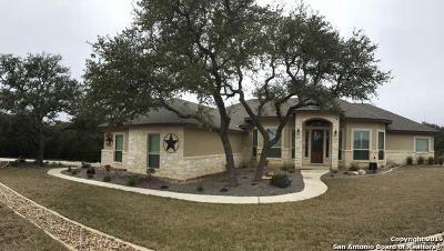 Canyon Lake Single Family Home For Sale: 3118 Comal Spgs