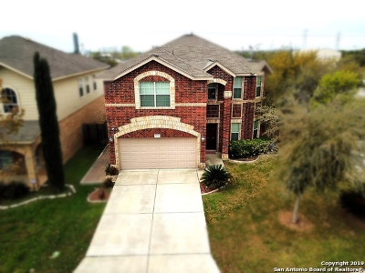 Helotes Single Family Home Active Option: 9838 Cochem Path