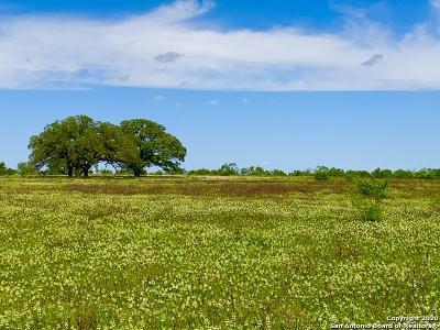 Atascosa County Farm & Ranch For Sale: 3500 Coble Rd