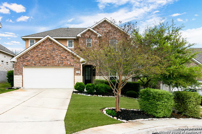Cibolo Canyons Single Family Home For Sale: 3319 Brook Tree Ct